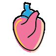 Jantung & Darah